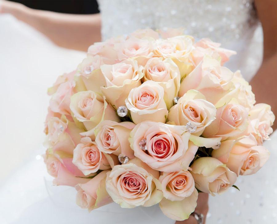 Wedding at Salini Resort